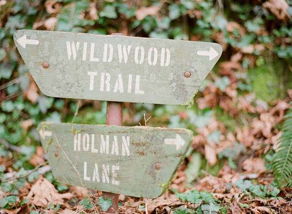 Where The Wild Things Are inspired walk in the woods | 100 Layer Cakelet