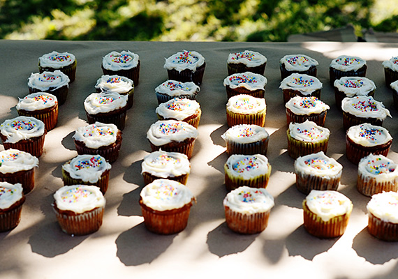 Outdoor Boys 3rd birthday party | 100 Layer Cakelet