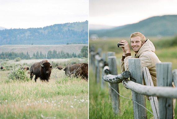 Yellowstone babymoon | Acres of Hope Photography | 100 Layer Cakelet