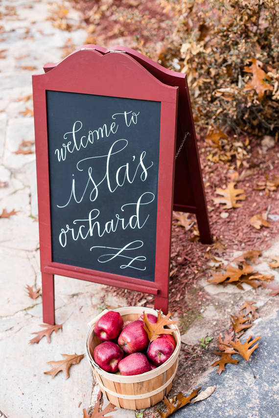 Apple orchard first birthday | Kelley Cannon Events | 100 Layer Cakelet