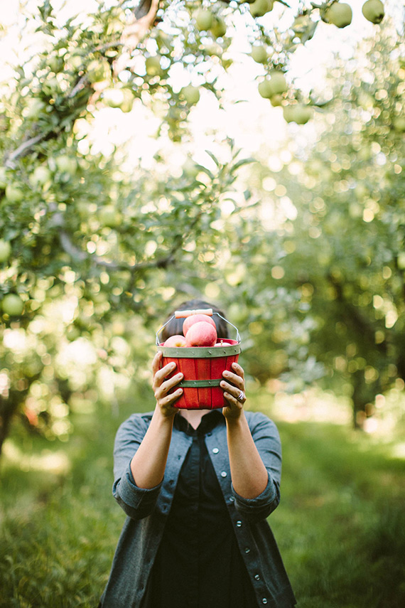 Apple orchard family photos by Kandice Breinholt | 100 Layer Cakelet