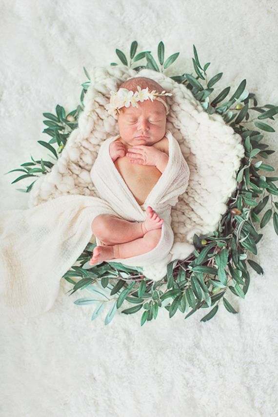 styled newborn photos